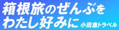 小田急トラベル:ロマンスカー+宿泊予約