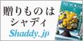 シャディ【カタログギフト・冠婚葬祭・出産内祝い】