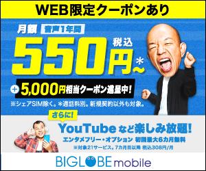 BIGLOBEモバイル(格安SIM/スマホ)