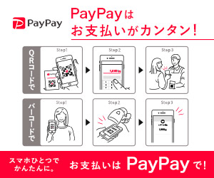 PayPay Android対応アプリ