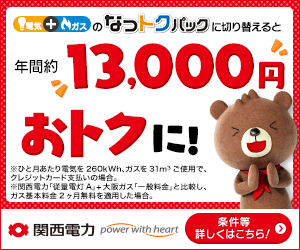 関西電力株式会社【なっトクパック】